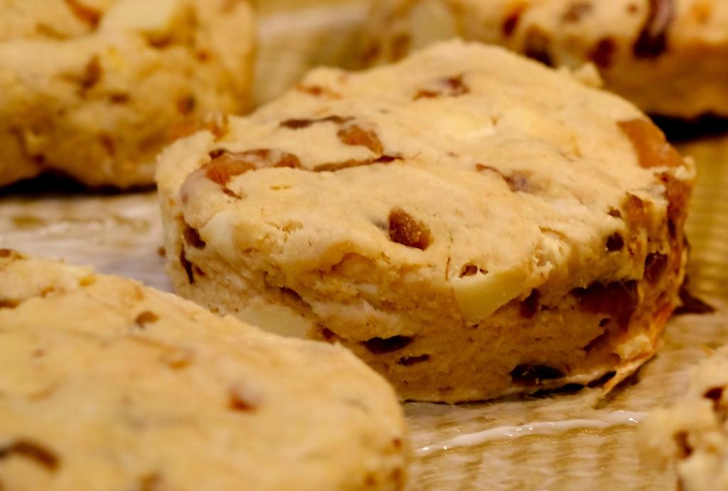 Uncooked Biscuit
